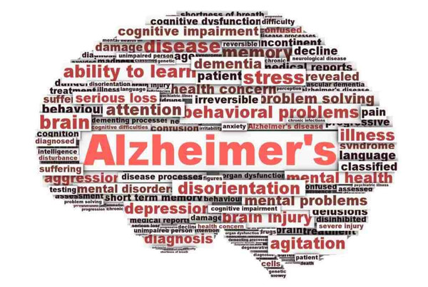 The Effects of Medical Marijuana on Alzheimer's Treatment