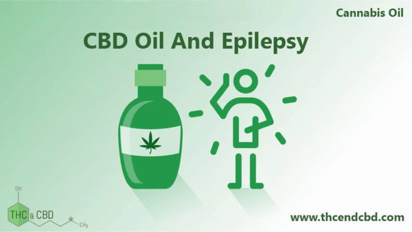 American Epilepsy Society Just Confirmed CBD Stops Epileptic Seizures