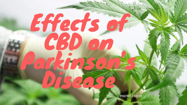 CBD And Its Effects On Parkinson's Disease