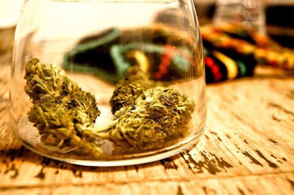 How Cannabis Could Treat Parkinson's Disease