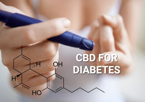 CBD Oil for Diabetes: All You Need to Know