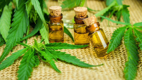 Mother, 44, cured of deadly breast cancer with cannabis oil