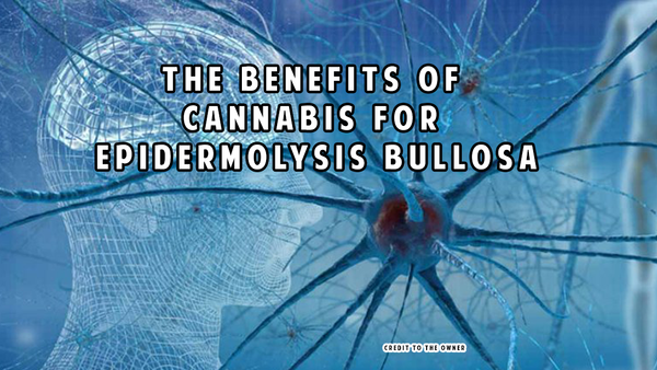 Cannabinoids in the management of difficult to treat pain