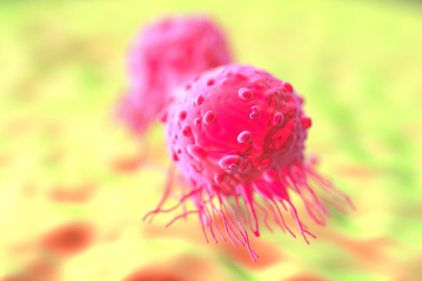 Study: Cannabidiol (CBD) Kills Breast Cancer Cells
