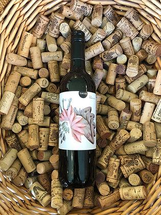 Bodega Vinedos Tinedo - Basico JA - Castilla