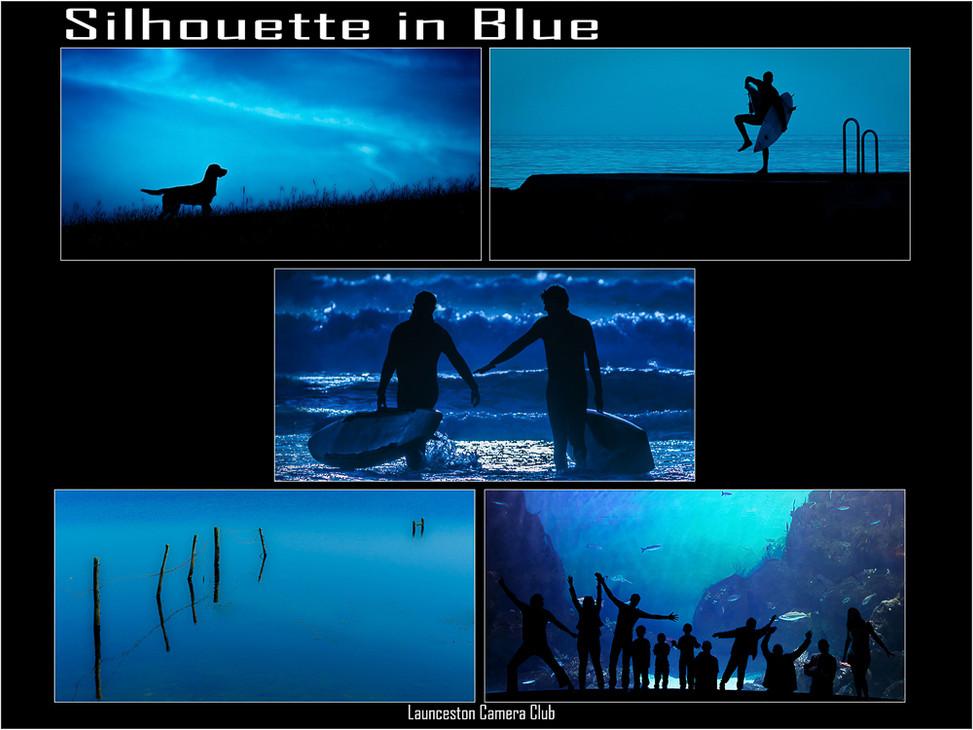 M6 Silhouette In Blue�.jpg