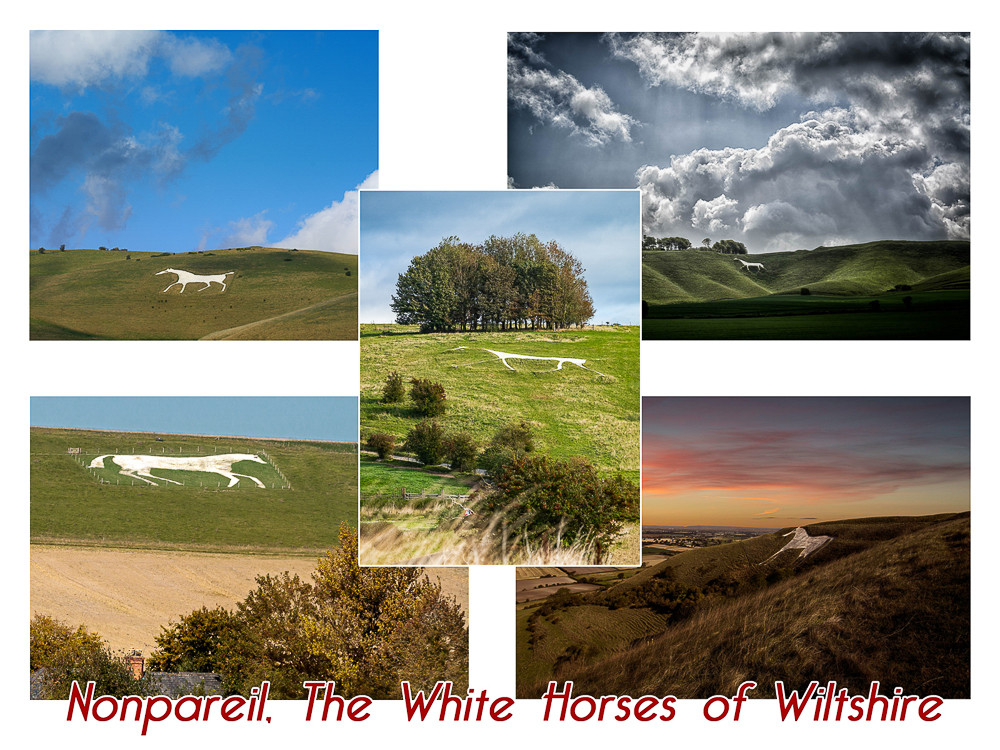 Q6 The White Horses of Wiltshire�.jpg