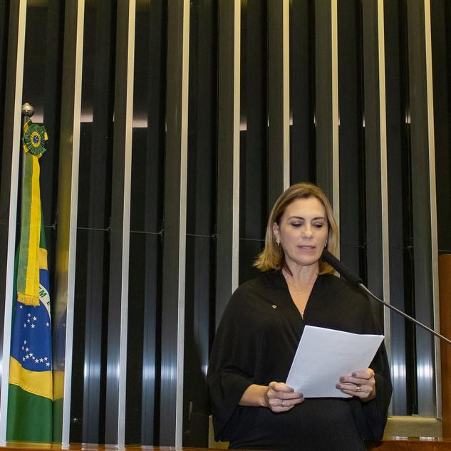 Deputada Rosana Valle
