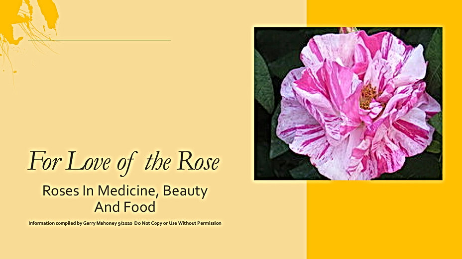 Roses as Food, Medicine and beauty Sept