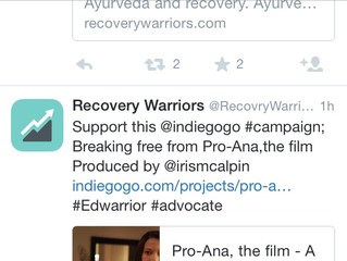 Now endorsed by Recovery Warriors!