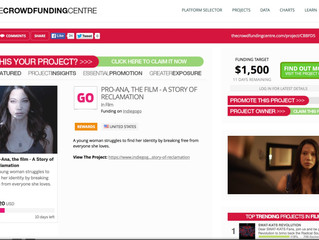 Campaign featured on TheCrowdfundingCentre.com