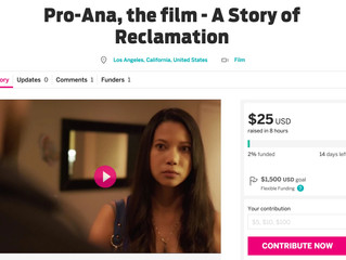 Indiegogo campaign is live!