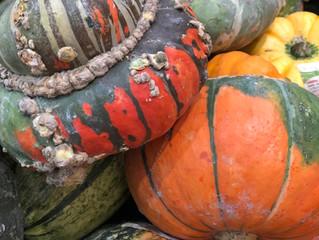 Helloween....Pumpkin again for dinner! ;-0