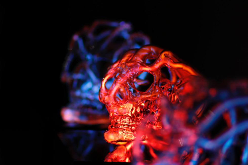 Eric Franklin Skulls // 2018