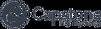 CAPSTONE-logo-Inspiring-picto%20plein_ed