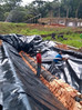 Saneamento ecológico protege os rios