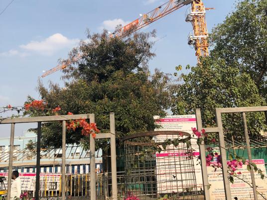 La Potain MCT 85 à l'œuvre sur le chantier d'un nouveau temple en Inde