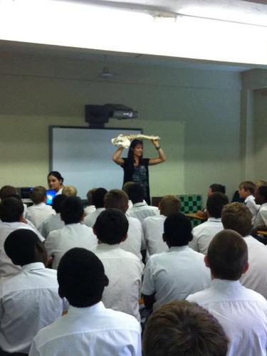 Teaching Chiropractic in schools