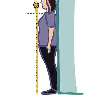 Sidesaddle---measure-chest.jpg