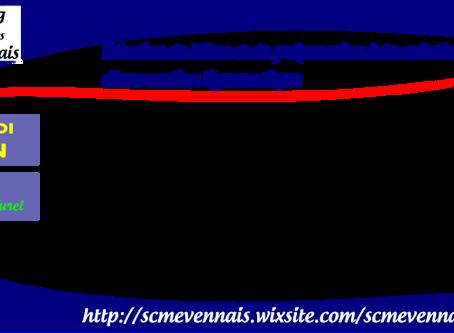 Réunion de bilan et de préparation à la création d'une section gymnastique