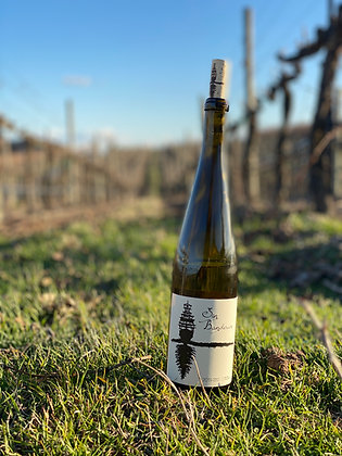 2019 DuBrul Riesling