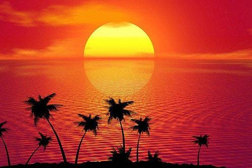 Sun Set  (Red & Yellow Blend)