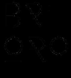 Bri Oro Brand Identity 2020.png