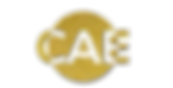 cae Transparent Gold - 2.png