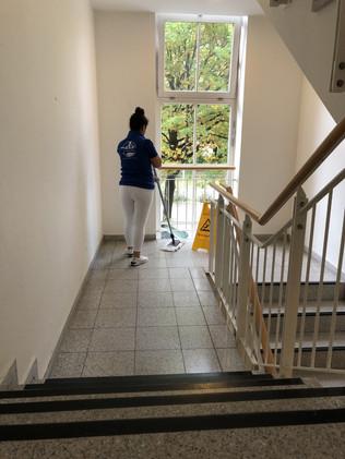 Treppenhausreinigung2.jpg