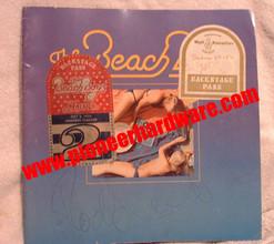 beachboys1970sprogram.jpg