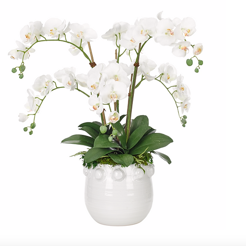 Orchid Phalaenopsis (White) - Clay Pot Silk Arrangement