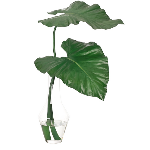 Colocasia Leaf (Green) - Glass Fluted Vase