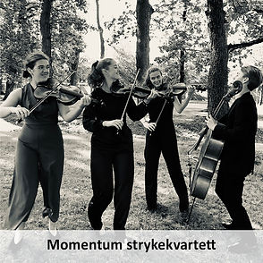 momentum_800x800.jpg