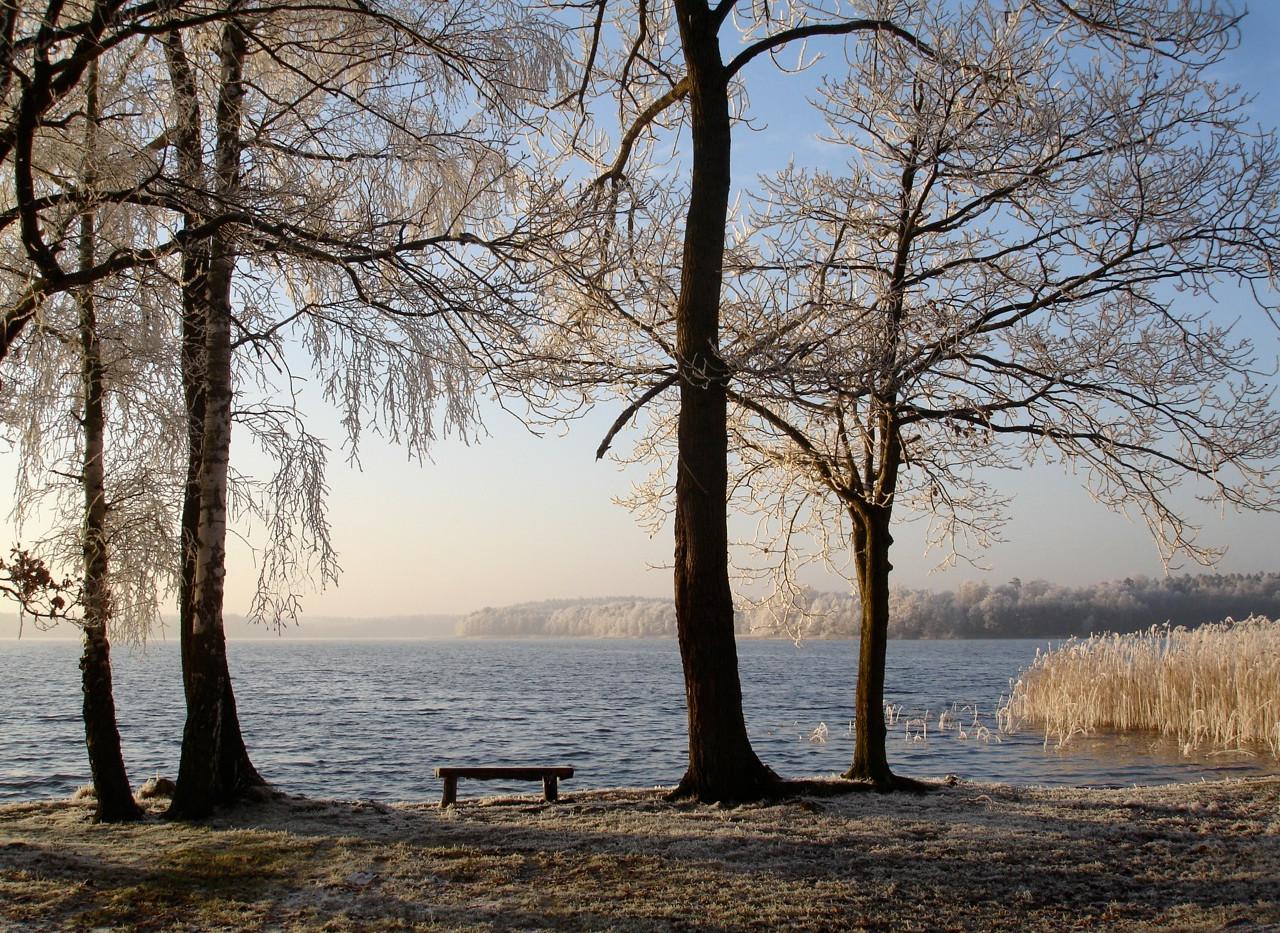 Winter Nebelsee.jpg