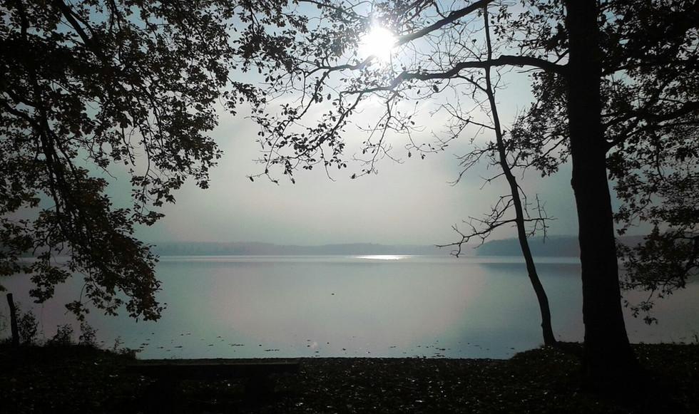 Herbst Nebelsee.jpg