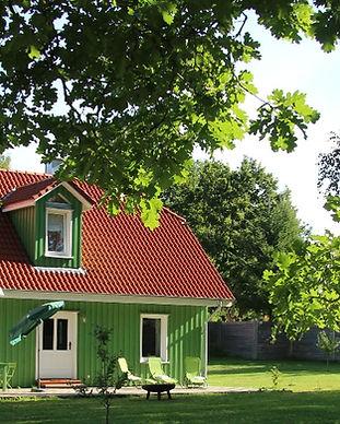 150909_Tante_Grün_hinten_edited.jpg