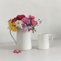 Large milk jug and creamer
