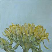 Sonneblumen_3.jpg