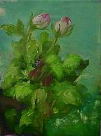 rosen.jpg