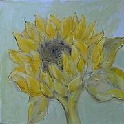 Sonneblumen_4.jpg