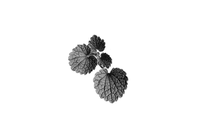 カキドオシ2-bw.png