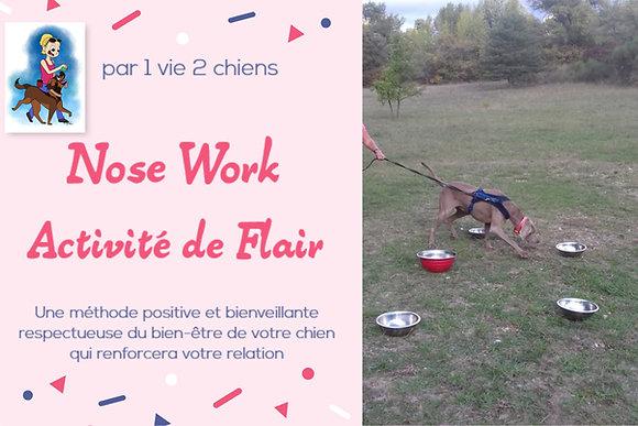 Nose Work , activité de flair ( 7 pages )