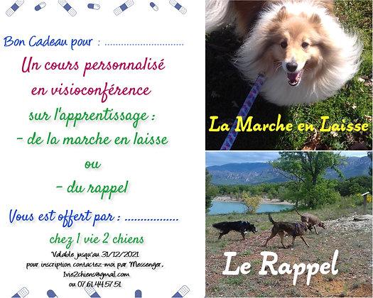 Un cours personnalisé en Visioconférence  M.en laisse ou Rappel