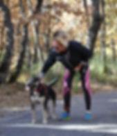 1 vie 2 chiens - éducateur canin comportementaliste cynologiste haut Var Gorges du Verdon