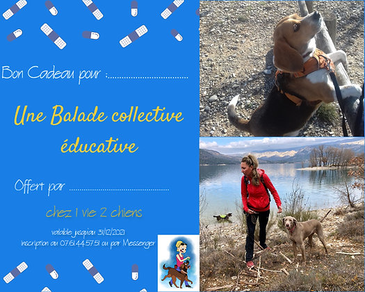 Bon Cadeau : Balade collective éducative