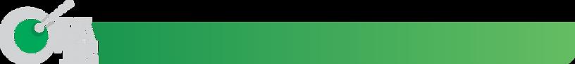 fondo titulo verde.png