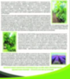 визитка2.jpg