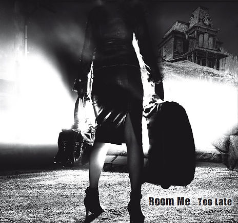 Too late Anaon bandcamp Room ME Roomme Band dooweet Dark rock darkrock anne-sophie remy cult of occult
