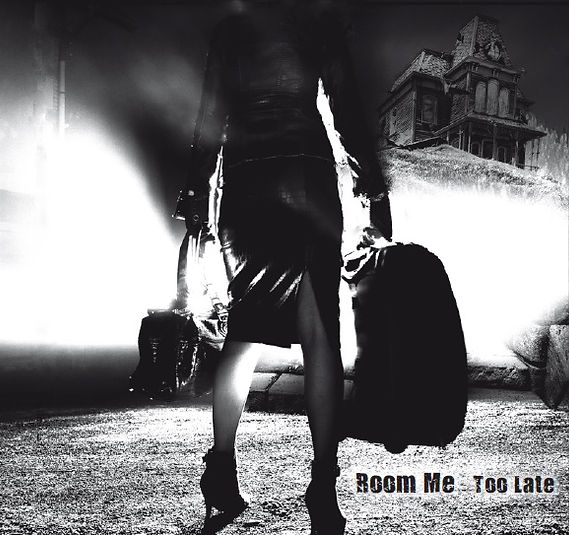 Too late Anaon bandcamp Room ME Roomme Band dooweet Dark rock darkrock anne-sophie remy cult of occult