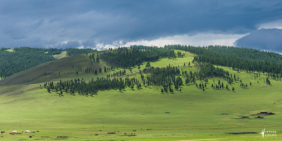 Mongolie-76.jpg